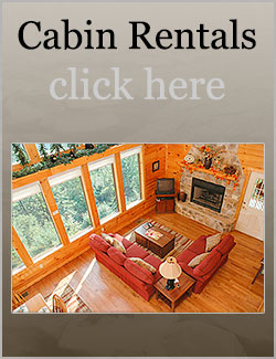 Little River Realty Smoky Mountain Cabin Rentals And Tennessee